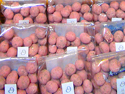 季節限定の豆