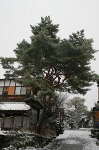 雪景色 中山道 木曽路 馬籠 妻籠 2