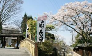 07 馬籠宿 入口 桜のトンネル